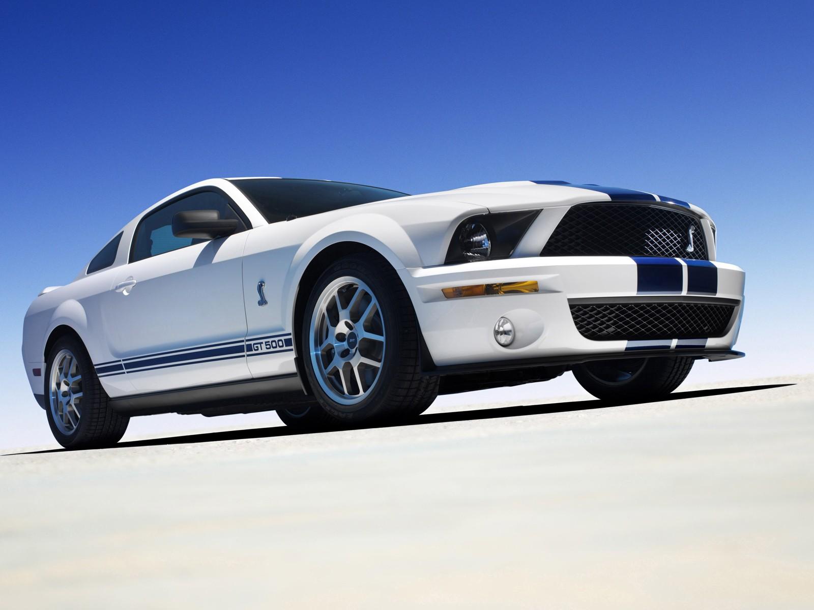 Shelby Cobra GT500 Mustang 056