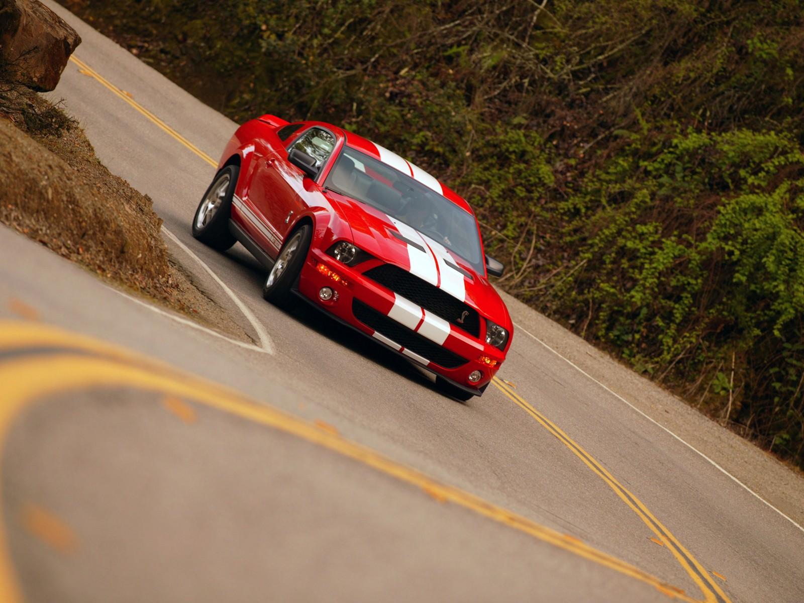 Shelby Cobra GT500 Mustang 075